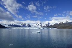 Nordenskjöld Glacier by Phil Tempest