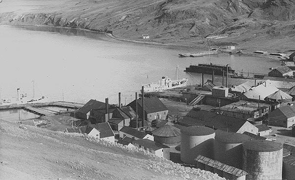 Grytviken (1960's). Photo John Dye